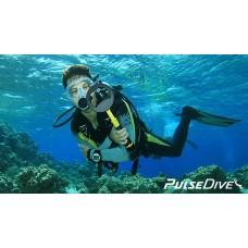 Nokta PulseDive Scuba Su Altı ve Pinpointer Dedektör
